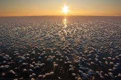 Sea in ice and snow in winter Stock Photography