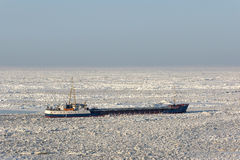 Sea ice stranded ship Royalty Free Stock Image