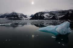 Sea of ice - Arctic Royalty Free Stock Photo
