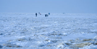 Sea ice Stock Images