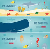 Sea icons and symbols set. Sea animals. Nautical design elements. Concept website template. Vector. Illustration Stock Photo