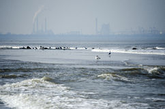 Sea with a industrie skyline Royalty Free Stock Photography