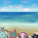 Sea inhabitants on a beach sand Royalty Free Stock Photos