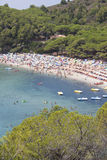 Sea island of Elba Stock Photography