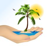 Sea island with palm in a female hand. Vector Royalty Free Stock Photography