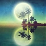 Sea with island with palm trees and full moon at n Stock Images