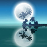 Sea with island with palm trees and full moon. Stock Images
