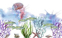 Sea jellyfish. Isolated on white background stock illustration