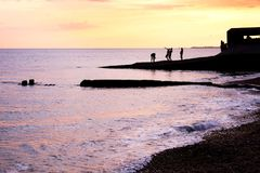 Teenagers playing at unset at waters edge. Sea jetty at sunset on brighton beach, the jetty is silhoutted black by the bright orange and yellow glow of the royalty free stock images