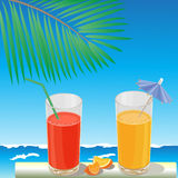 Sea and juice Stock Image