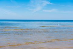Sea in Jurmala. On a sunny day stock photos