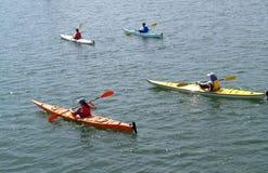 Sea Kayak Convoy. Group of Sea Kayaks on the Bay Stock Photography