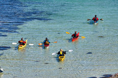 Sea Kayak Convoy island Hitra Stock Images