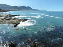 Sea Kayaking in Hermanus, South Africa. Tourists sea kayaking from the old harbour in Hermanus, South Africa, to go whale watching Stock Image