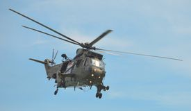 Sea King royalty free stock image