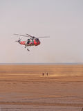 Sea king Stock Images