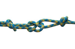 Sea knot. Stock Photography