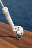 Sea knot Royalty Free Stock Image
