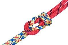 Sea knot Royalty Free Stock Photo