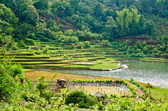 Sea Lake. Is a natural lake in the province of Gia Lai, Vietnam, in which people fishing and hydroelectricity Royalty Free Stock Photo