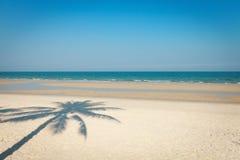 Sea landscape. Seascape, shadow of palm tree on a sandy beach Stock Photos