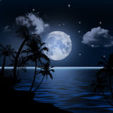 Sea landscape. Sea landscape with the moon and palm trees Stock Photos