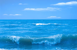 Sea landscape. With wind and wave Stock Photo