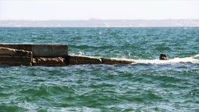 The sea landscape stock video