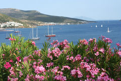 Sea landscape and homes at Bodrum Stock Photos