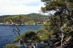 Sea landscape near bandol, France Stock Photos
