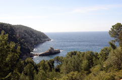 Sea landscape near bandol, France. Mediterranee sea landscape and trees with submarine rock, France Royalty Free Stock Images