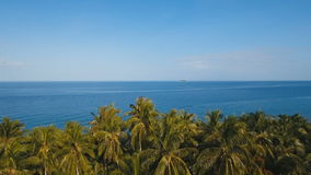 Sea landscape with the sea and palm trees.Aerial view:Camiguin island Philippines. Tropical landscape with the sea and palm trees against a blue sky stock footage