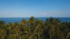 Sea landscape with the sea and palm trees.Aerial view:Camiguin island Philippines. Tropical landscape with the sea and palm trees against a blue sky stock video footage