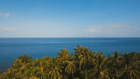 Sea landscape with the sea and palm trees.Aerial view:Camiguin island Philippines. Tropical landscape with the sea and palm trees against a blue sky stock video