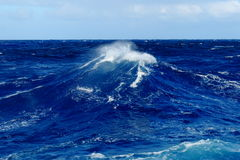 Sea large ocean wave Royalty Free Stock Photos