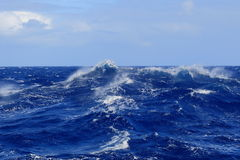 Sea large ocean wave Royalty Free Stock Images