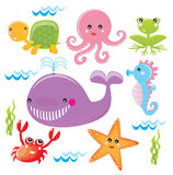 Sea life. Sea animals on the white background Royalty Free Stock Photography