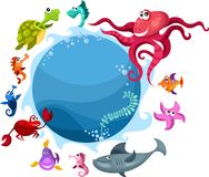 Sea life Royalty Free Stock Photos