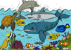 Sea life. Vector illustration of sea life Royalty Free Stock Photo