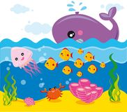 Sea life. Illustartion of marine animals and plants