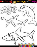 Sea life animals cartoon coloring book. Coloring Book or Page Cartoon Illustration of Color and Black and White Sea Life Animals Set for Children Royalty Free Stock Photo