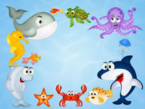 Sea life animals Stock Photography