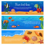 Sea Life Animals Plants Banner Set. Three isolated horizontal sea life animals plants banner set with fish crabs and space for text vector illustration Stock Image