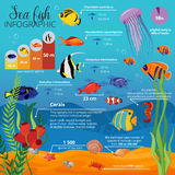 Sea Life Animals Plants Infographic. With types of fish their sizes and descriptions vector illustration Stock Images