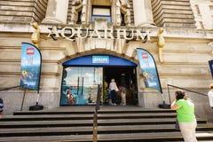 Sea Life Aquarium, London Stock Image