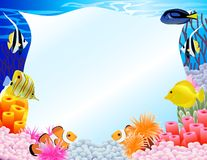 Sea life background Stock Images