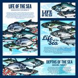 Sea life banner with fish and ocean animal sketch. Sea life banner template with deep water fish and ocean animal sketch. Salmon, tuna and mackerel, carp, perch Stock Photo