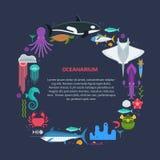 Sea Life Border Frame Stock Image