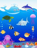Sea life cartoon Royalty Free Stock Images