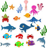 Sea life cartoon background Stock Images